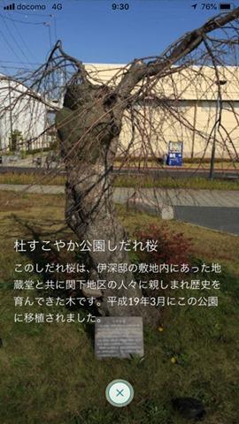 IMG_0533